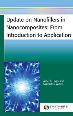 Update on Nanofillers in Nanocomposites: From Introduction to Application