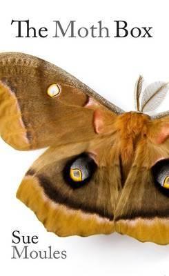 The Moth Box