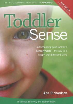 Toddler Sense: Understanding Your Toddler's Sensory World