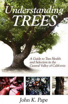 Understanding Trees: A Guide to Tree Health & Selection in the Central Valley of California