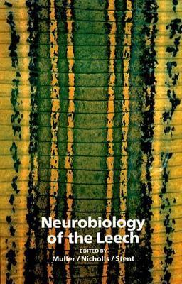Neurobiology of the Leech
