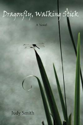 Dragonfly, Walking Stick