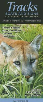 Tracks, Scats & Signs of Florida Wildlife  : A Guide to Interpreting Common Wildlife Trails