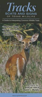 Tracks, Scats & Signs of Texas Wildlife  : A Guide to Interpreting Common Wildlife Trails