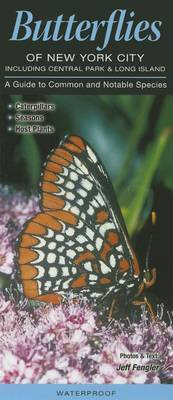 Butterflies of New York City, Incl. Central Park & Long Island  : A Guide to Common & Notable Species