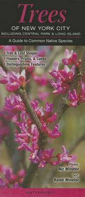 Trees of New York City, Incl. Central Park & Long Island  : A Guide to Common Native Species