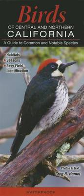 Birds of Central & Northern California  : A Guide to Common & Notable Species