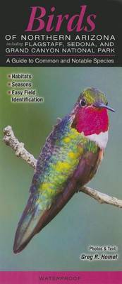 Birds of Northern Arizona Including Flagstaff, Sedona, & Grand Canyon National Park  : A Guide to Common & Notable Species