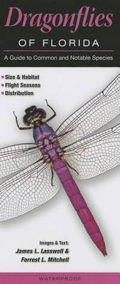 Dragonflies of Florida: A Guide to Common & Notable Species