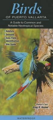 Birds of Puerto Vallarta: A Guide to Common & Notable Neotropical Species