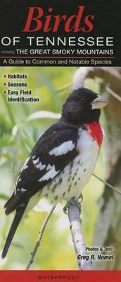 Birds of Tennessee, Incl. the Great Smoky Mountains: A Guide to Common & Notable Species