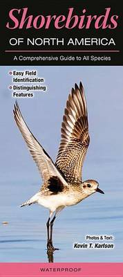 Shorebirds of North America: A Comprehensive Guide to All Species