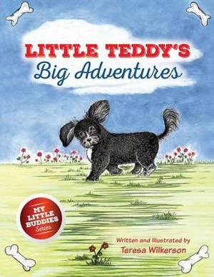 Little Teddy's Big Adventures