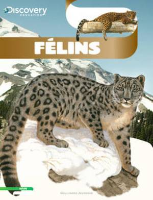 Discovery Education: Felins