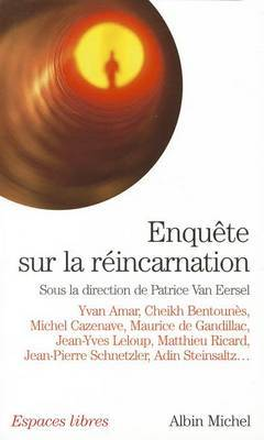 Enquete Sur La Reincarnation