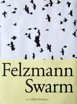 Lukas Felzmann: Swarm