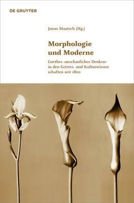 Morphologie Und Moderne: Goethes Anschauliches Denken in Den Geistes- Und Kulturwissenschaften Seit 1800