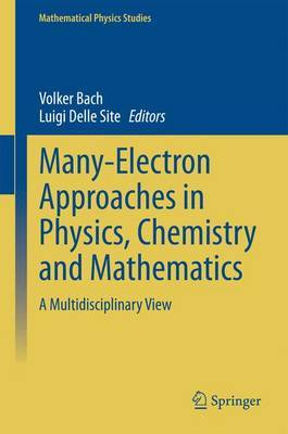 Many-Electron Approaches in Physics, Chemistry and Mathematics: A Multidisciplinary View