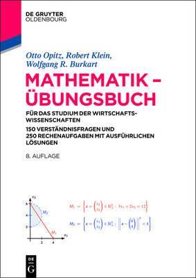 Mathematik - Ubungsbuch: Fur Das Studium Der Wirtschaftswissenschaften. 150 Verstandnisfragen Und 250 Rechenaufgaben Mit Ausfuhrlichen Losungen