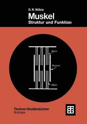 Muskel: Struktur Und Funktion