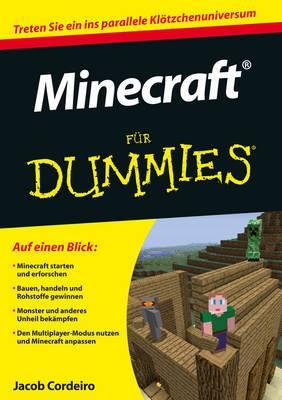 Minecraft Fur Dummies