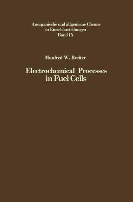 Electrochemical Processes in Fuel Cells