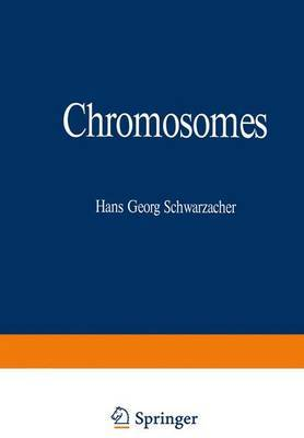 Chromosomes: In Mitosis and Interphase