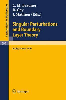 Singular Perturbations and Boundary Layer Theory: Proceedings of the Conference Held at the Ecole Centrale De Lyon, December 8-10, 1976