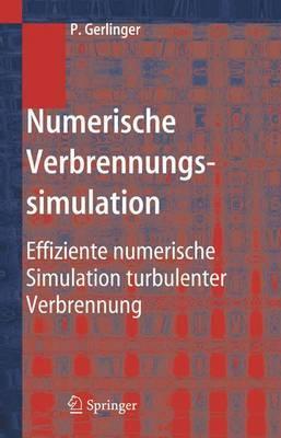 Numerische Verbrennungssimulation: Effiziente Numerische Simulation Turbulenter Verbrennung