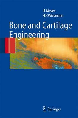 Bone and Cartilage Engineering: From Cells to Skeletal Defect Regeneration