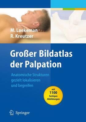 Grosser Bildatlas der Palpation: Anatomische Strukturen Gezielt Lokalisieren und Begreifen