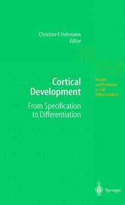 Cortical Development: From Specification to Differentiation