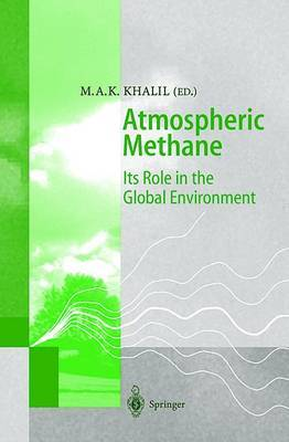 Atmospheric Methane: Its Role in the Global Environment