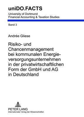 Risiko- Und Chancenmanagement Bei Kommunalen Energieversorgungsunternehmen in Der Privatwirtschaftlichen Form Der Gmbh Und AG in Deutschland