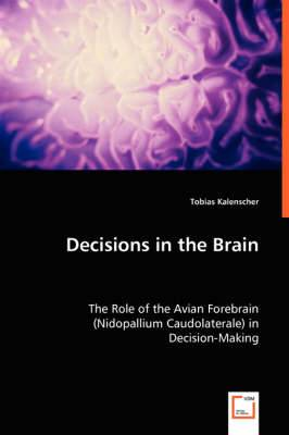 Decisions in the Brain