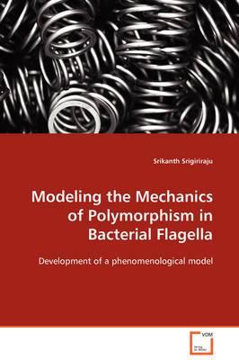 Modeling the Mechanics of Polymorphism in Bacterial Flagella