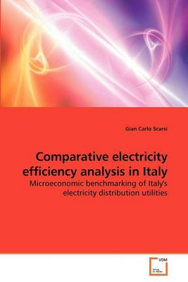 Comparative Electricity Efficiency Analysis in Italy