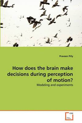 How Does the Brain Make Decisions During Perception of Motion?