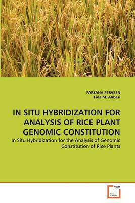 In Situ Hybridization for Analysis of Rice Plant Genomic Constitution