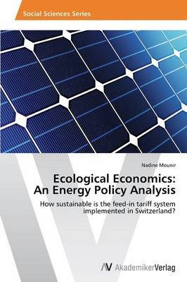 Ecological Economics: An Energy Policy Analysis