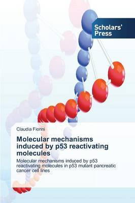 Molecular Mechanisms Induced by P53 Reactivating Molecules