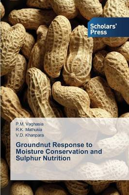 Groundnut Response to Moisture Conservation and Sulphur Nutrition