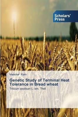 Genetic Study of Terminal Heat Tolerance in Bread Wheat
