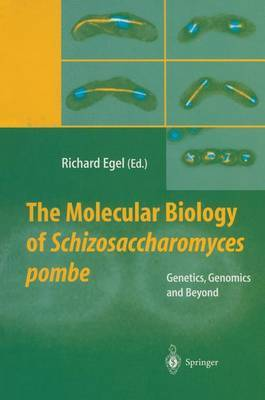 The Molecular Biology of Schizosaccharomyces Pombe