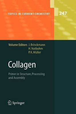 Collagen: Primer in Structure, Processing and Assembly