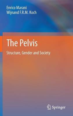 The Pelvis: Structure, Gender and Society