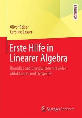 Erste Hilfe in Linearer Algebra: Uberblick Und Grundwissen Mit Vielen Abbildungen Und Beispielen