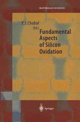 Fundamental Aspects of Silicon Oxidation