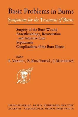 Basic Problems in Burns: Proceedings