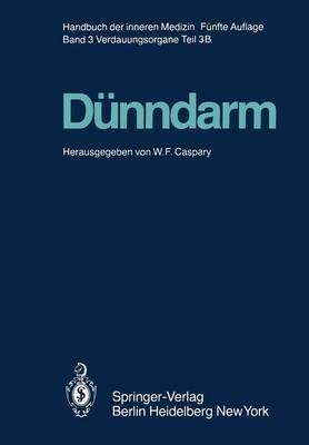 Dunndarm B